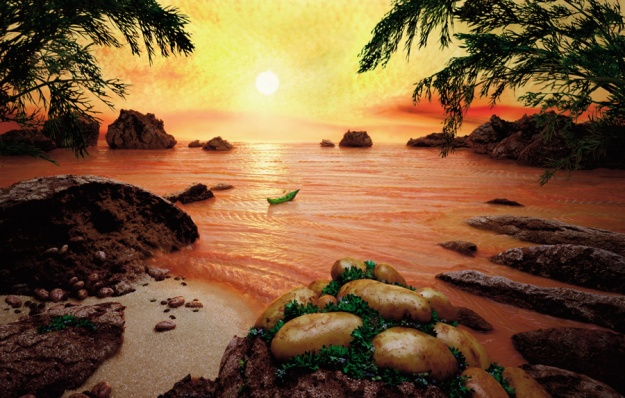 Salmon-Sea. Carl Warner